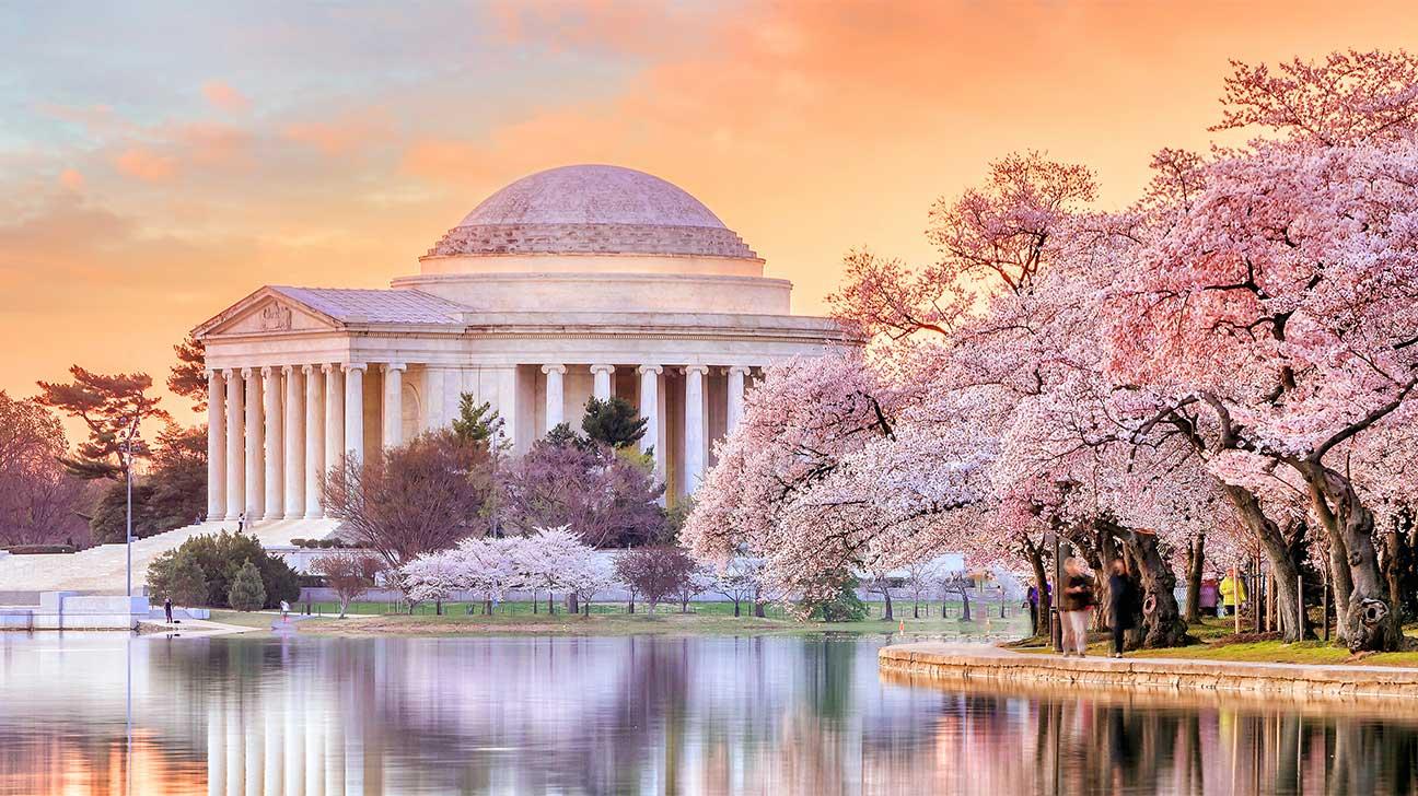Addiction Treatment Options In Washington, D.C.