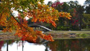 Addiction Treatment Options In Worcester, Massachusetts