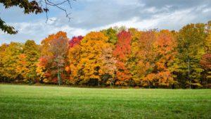 Addiction Treatment Options In Gardner, Massachusetts
