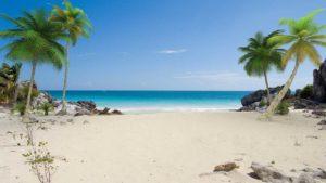 Addiction Treatment Options In Coconut Creek, Florida