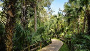 Addiction Treatment Options In Ocala, Florida