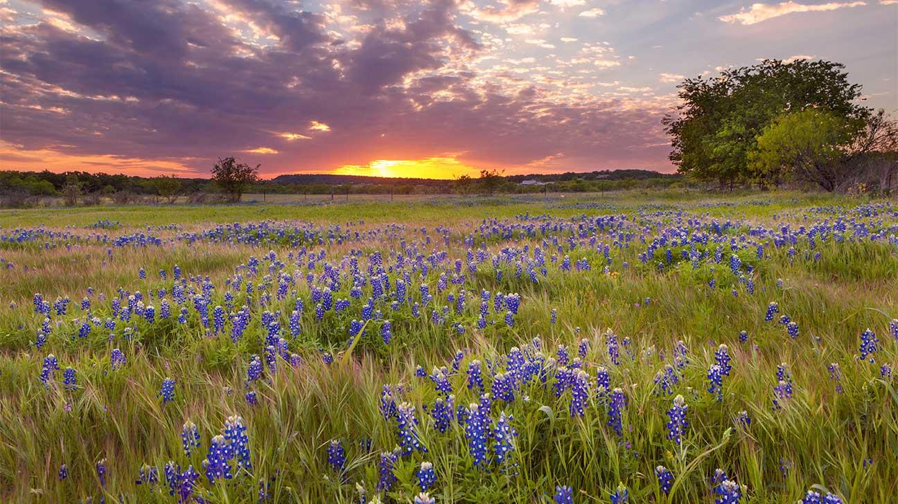 Addiction Treatment Options In Laredo, Texas