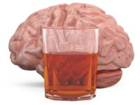 Can Drugs Permanently Damage The Brain?