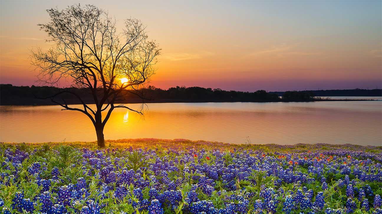 Addiction Treatment Options In Amarillo, Texas