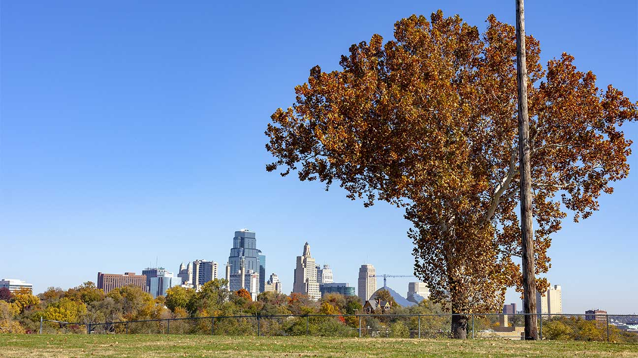 Addiction Treatment Options In Overland Park, Kansas
