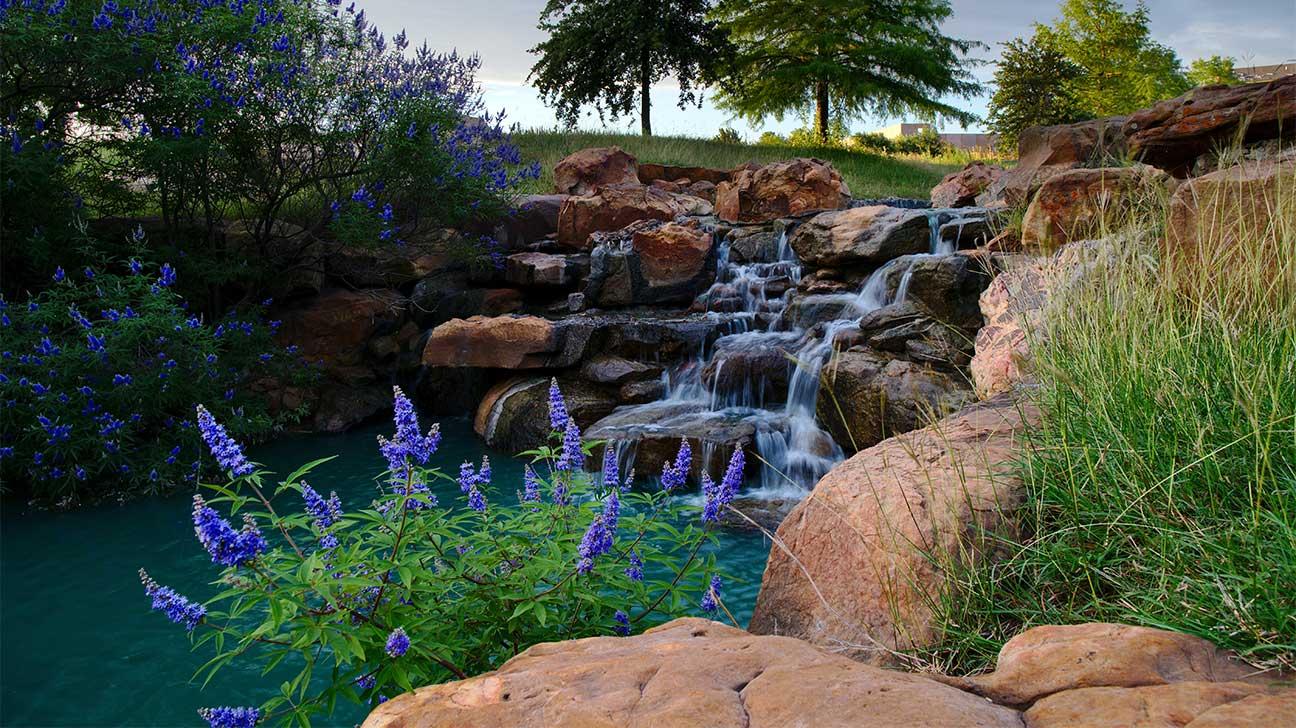 Addiction Treatment Options In Frisco, Texas