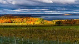 Traverse City, Michigan Alcohol And Drug Rehab Centers
