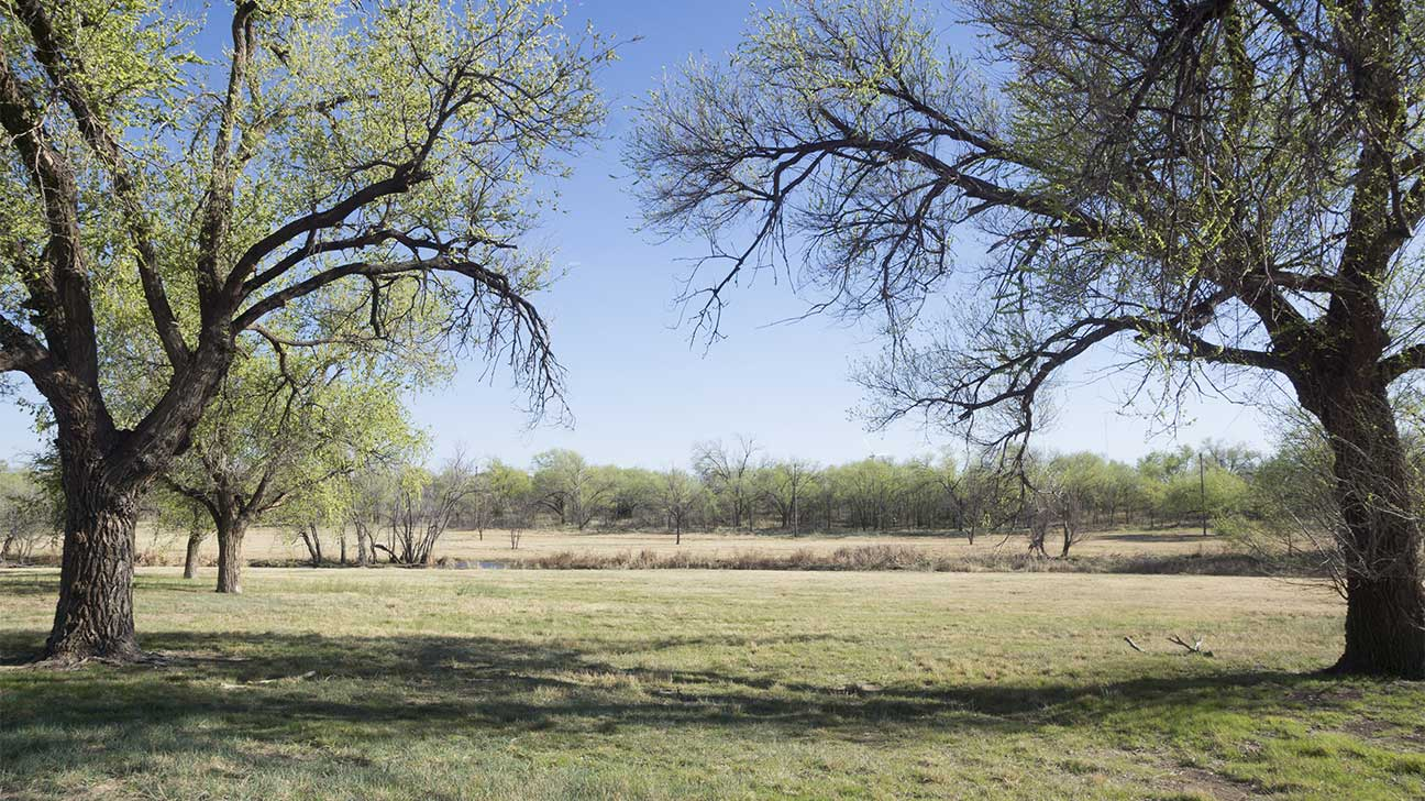 Lubbock, Texas Alcohol And Drug Rehab Centers