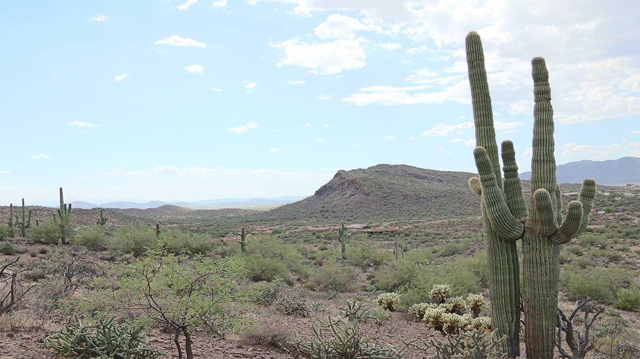 New River, Arizona Alcohol And Drug Rehab Centers