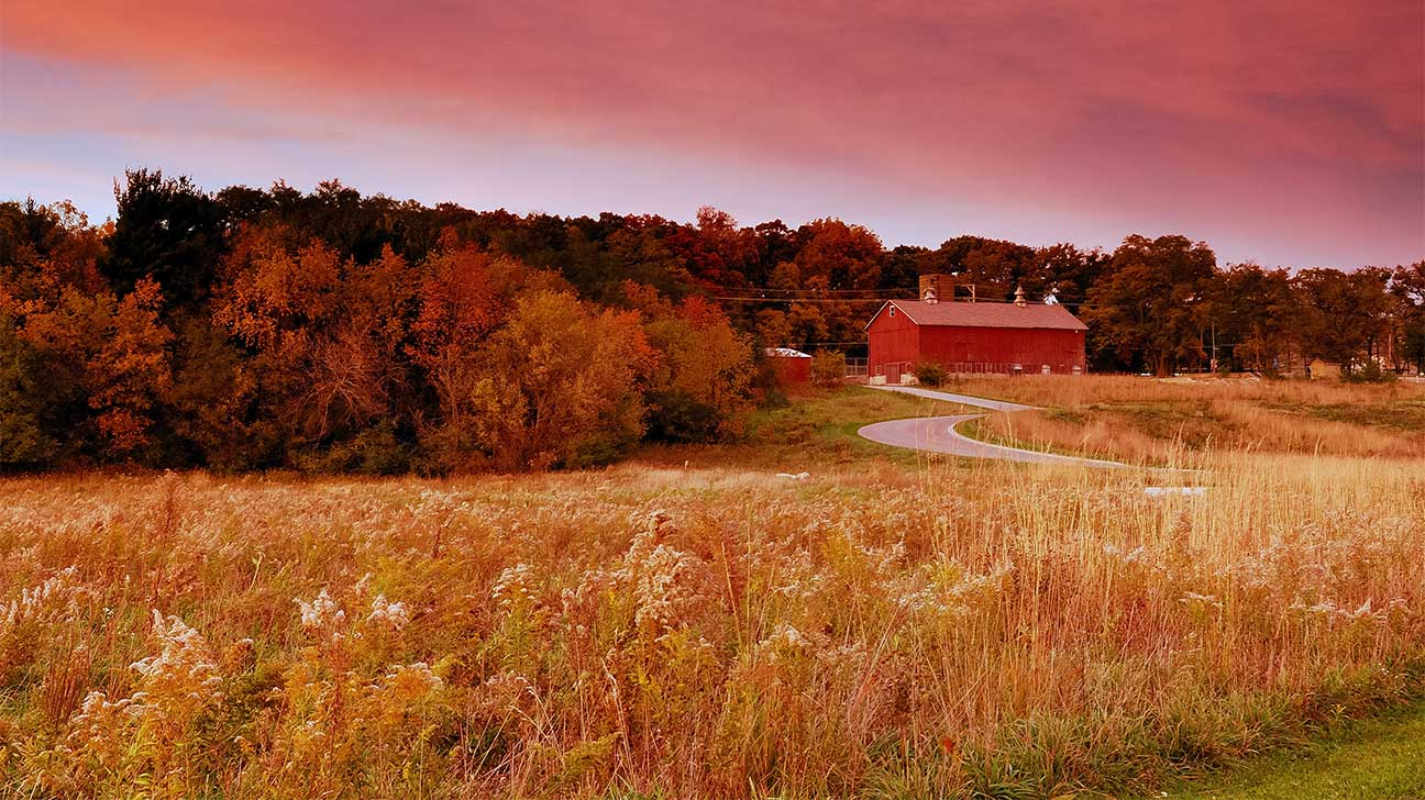 Oak Lawn, Illinois Alcohol And Drug Rehab Centers