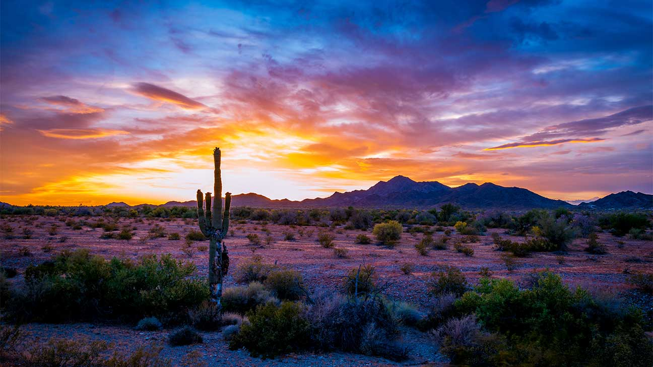 San Tan Valley, Arizona Alcohol And Drug Rehab Centers