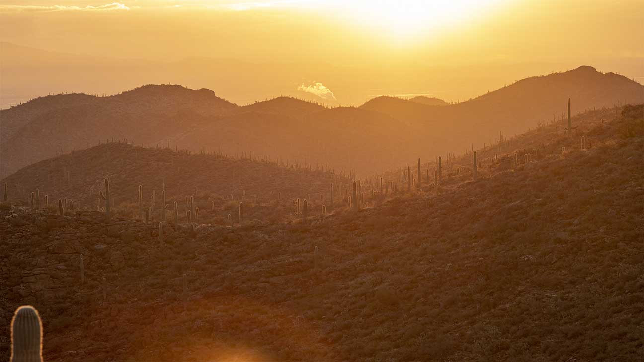 Sierra Vista Southeast, Arizona Alcohol And Drug Rehab Centers