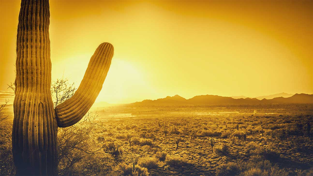Sun City, Arizona Alcohol And Drug Rehab Centers