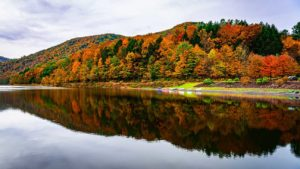 Lower Makefield, Pennsylvania Alcohol And Drug Rehab Centers