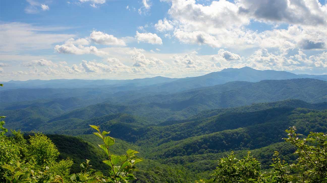 Blue Ridge, Virginia Alcohol And Drug Rehab Centers