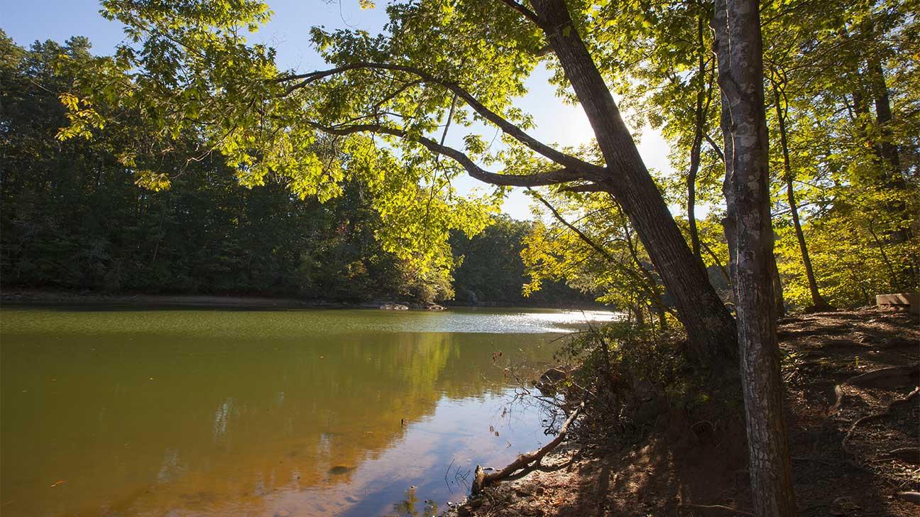 Huntersville, North Carolina Alcohol And Drug Rehab Centers