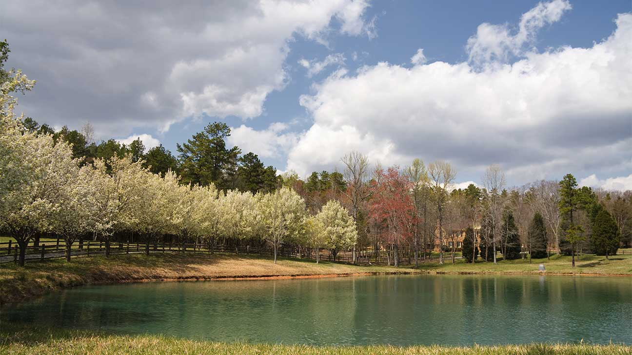 Leland, North Carolina Alcohol And Drug Rehab Centers