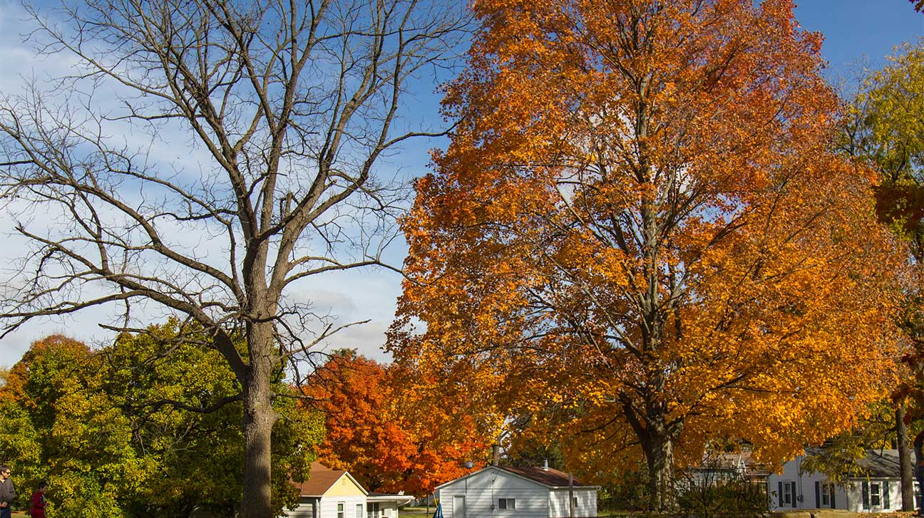 North Olmsted, Ohio Alcohol And Drug Rehab Centers