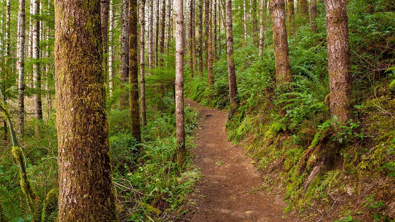 Oregon City, Oregon Alcohol And Drug Rehab Centers