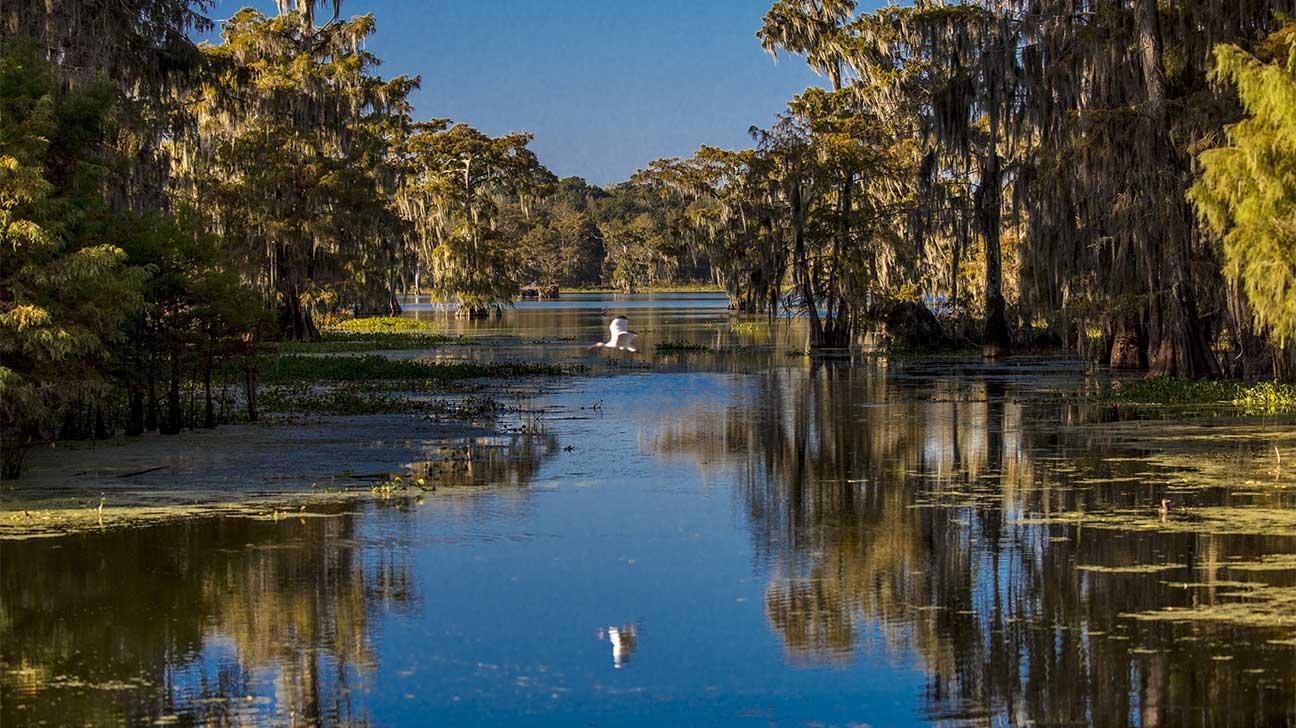 Hammond, Louisiana Alcohol And Drug Rehab Centers