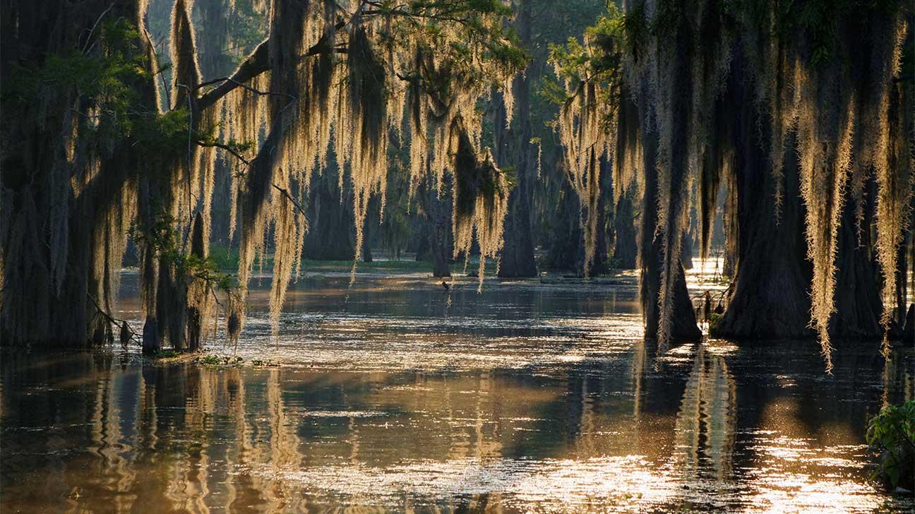 Kenner, Louisiana Alcohol And Drug Rehab Centers