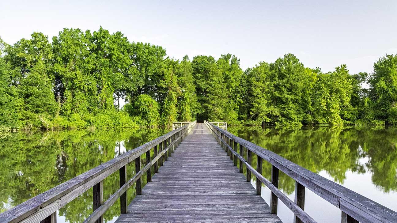 Saraland, Alabama Alcohol And Drug Rehab Centers