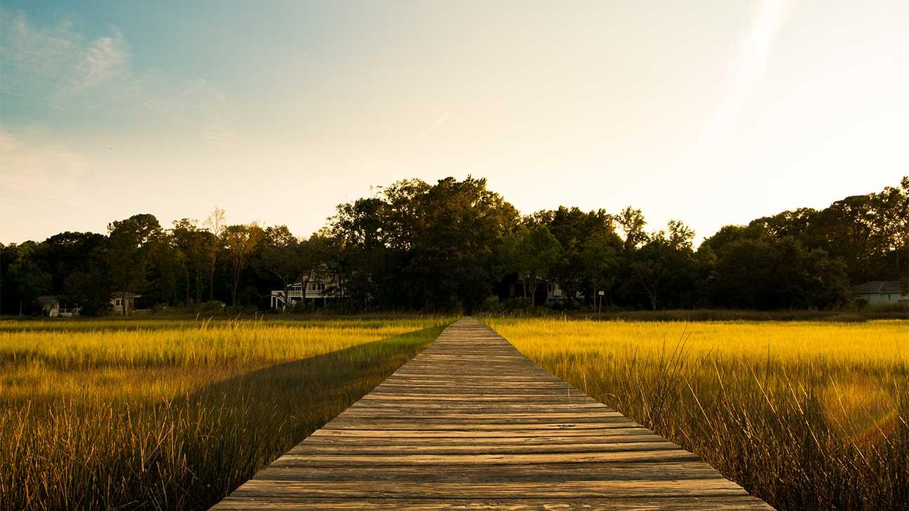 Walterboro, South Carolina Alcohol And Drug Rehab Centers