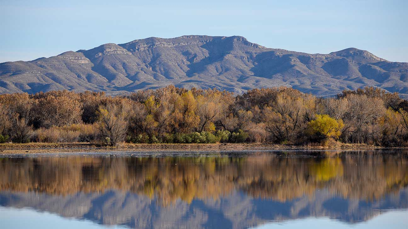Lovington, New Mexico Alcohol And Drug Rehab Centers
