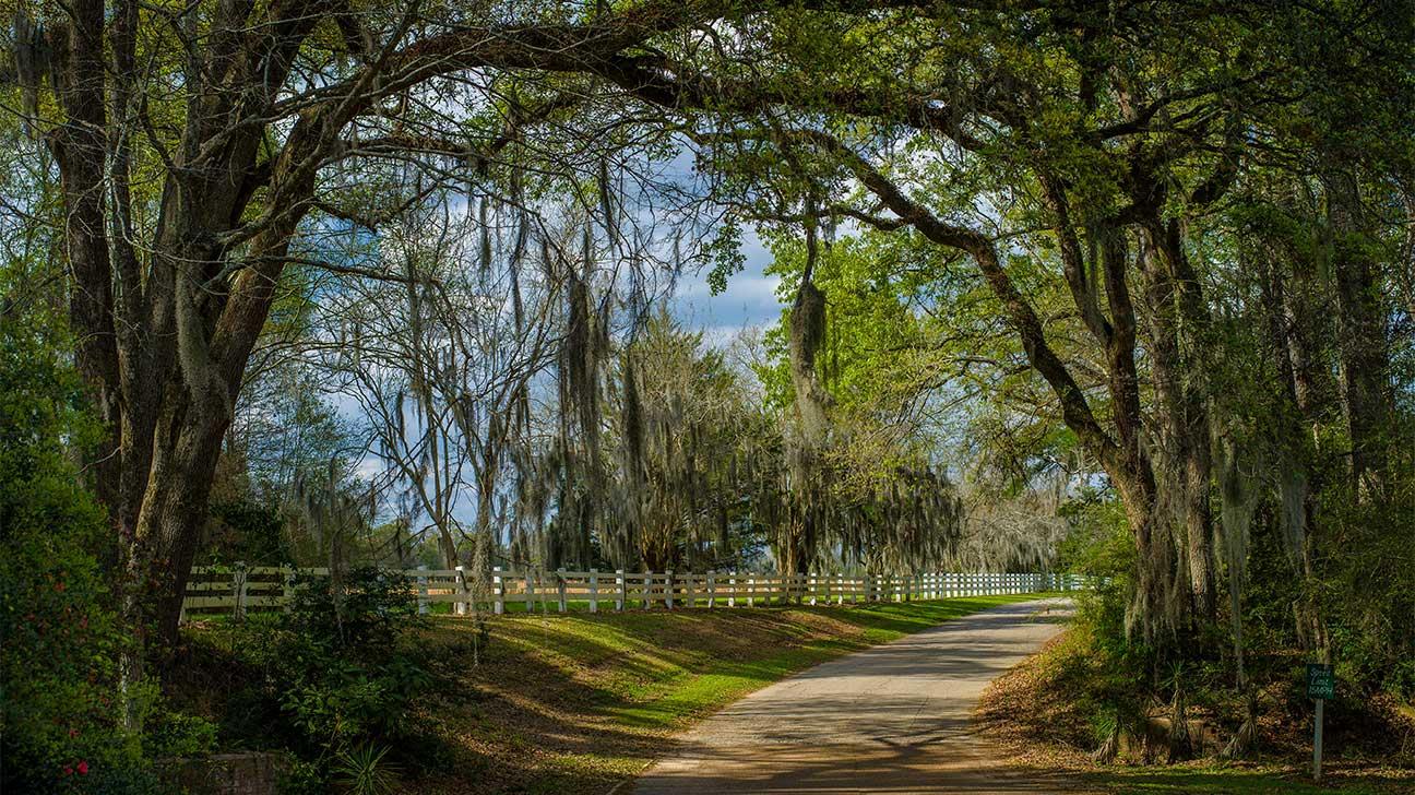 Marksville, Louisiana Alcohol And Drug Rehab Centers