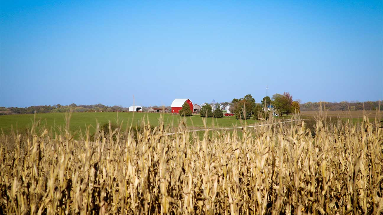 Oskaloosa, Iowa Alcohol And Drug Rehab Centers