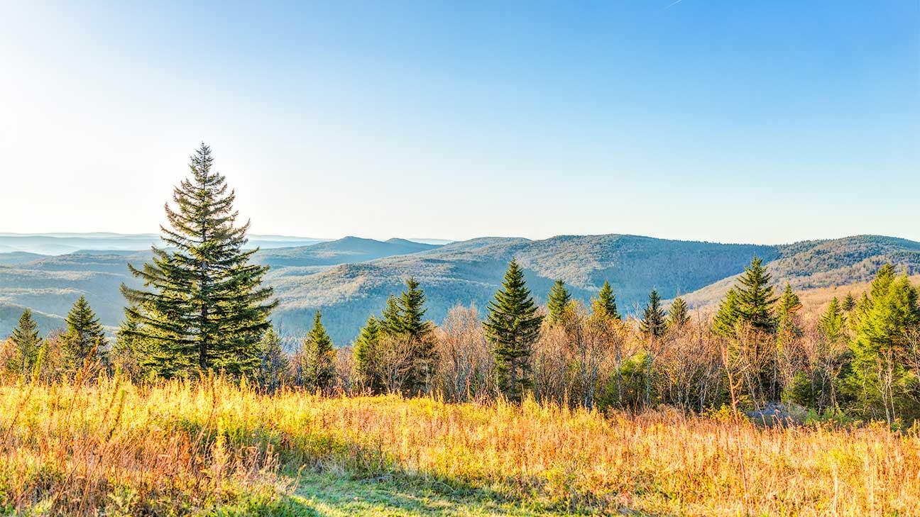 Buckhannon, West Virginia Alcohol And Drug Rehab Centers