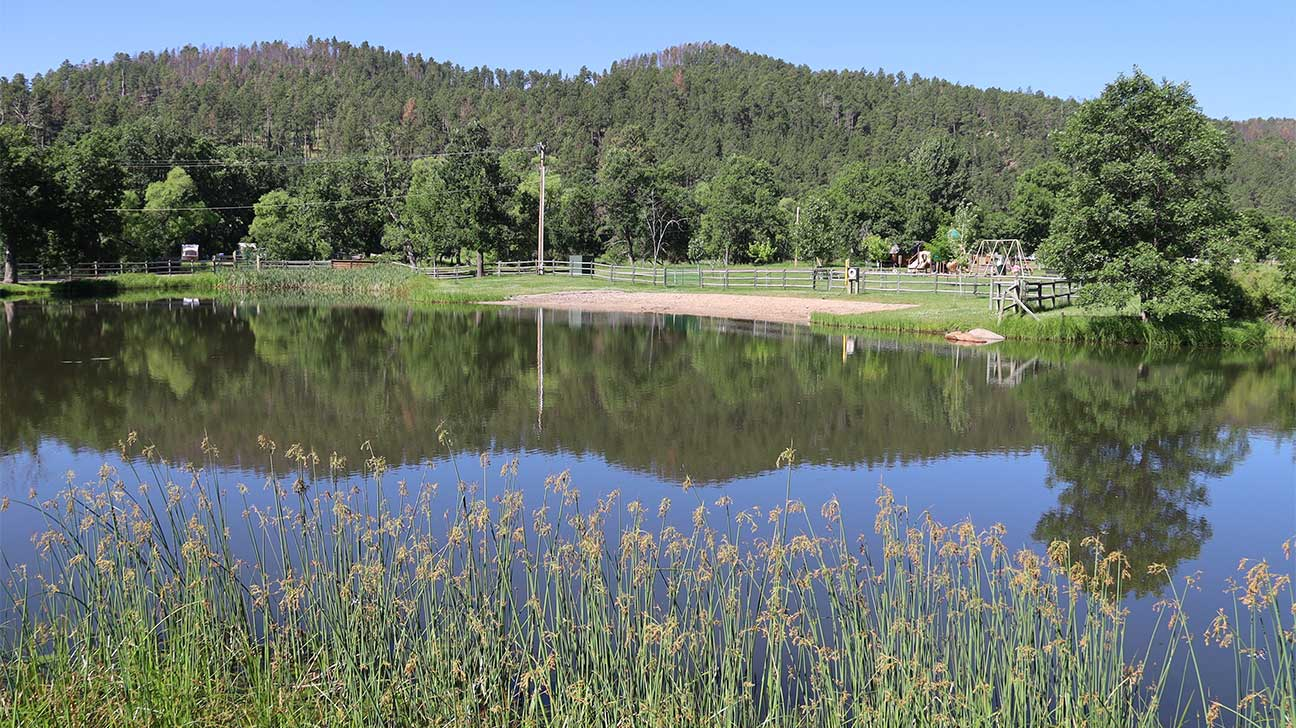 Custer, South Dakota Alcohol And Drug Rehab Centers