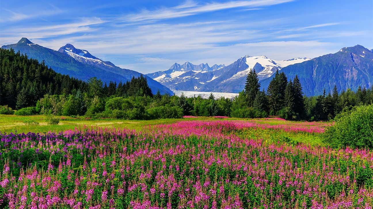 Fairbanks, Alaska Alcohol And Drug Rehab Centers