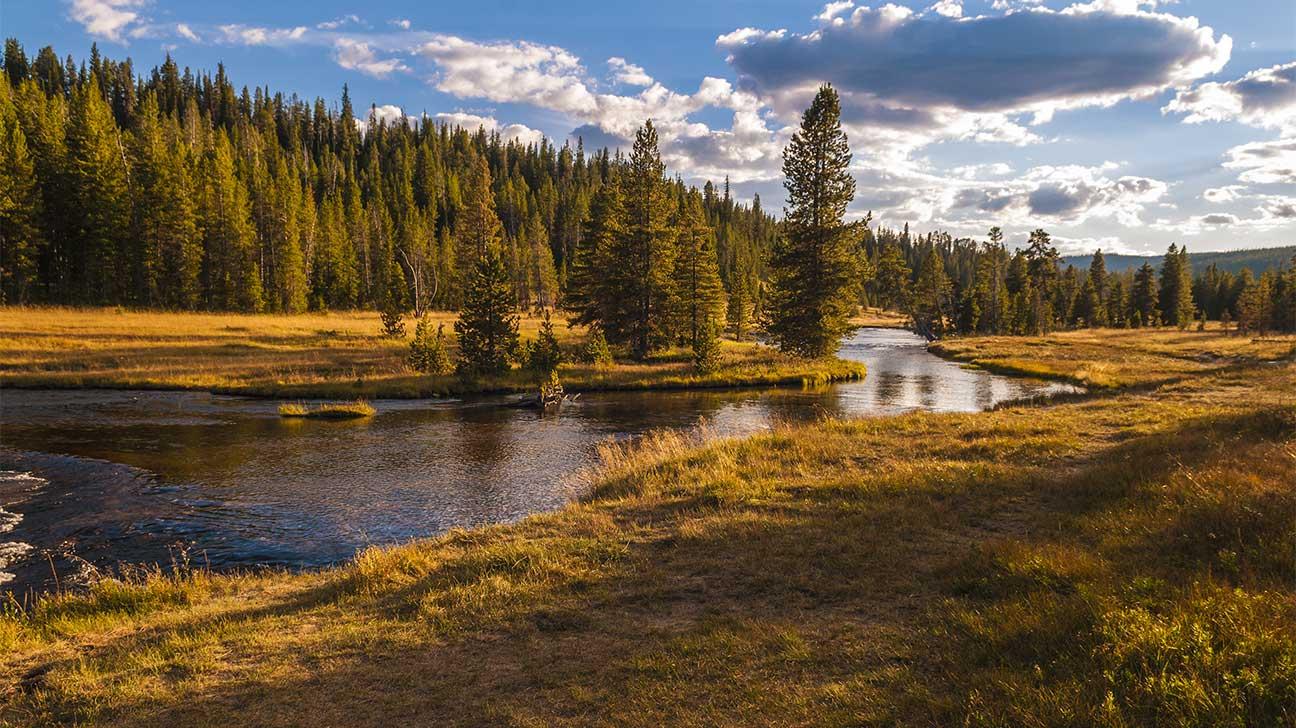 Glendive, Montana Alcohol And Drug Rehab Centers