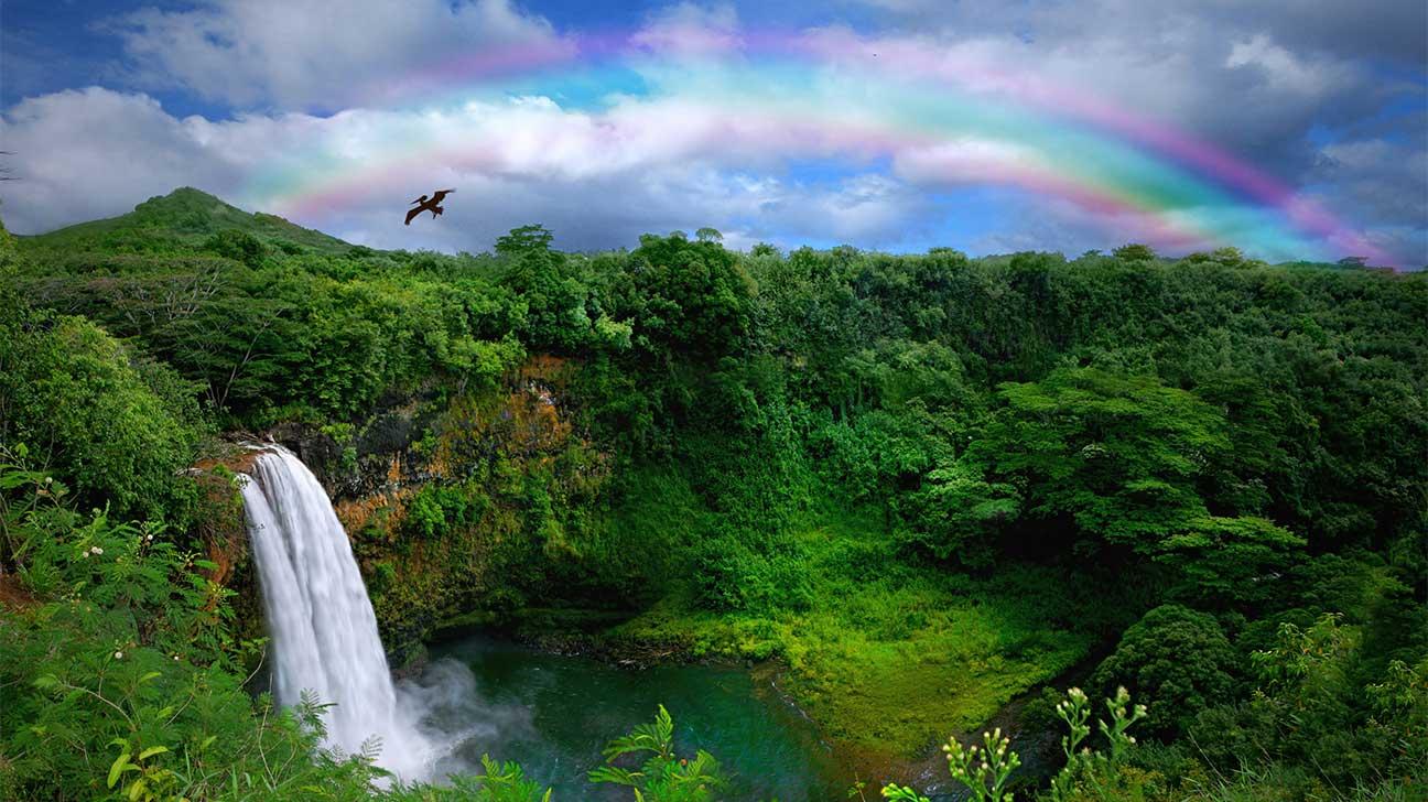 Kaneohe, Hawaii Alcohol And Drug Rehab Centers