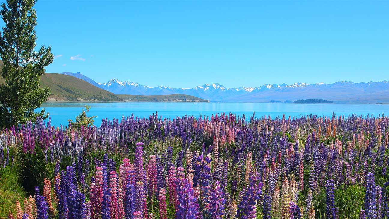 Kenai, Alaska Alcohol And Drug Rehab Centers