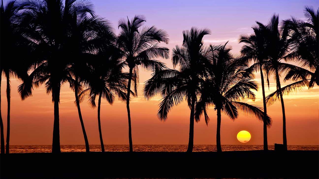 Mililani Town, Hawaii Alcohol And Drug Rehab Centers
