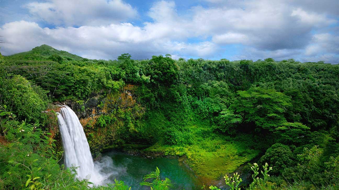 Wahiawa, Hawaii Alcohol And Drug Rehab Centers