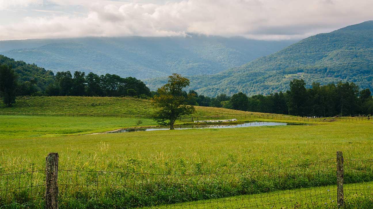 Weirton, West Virginia Alcohol And Drug Rehab Centers